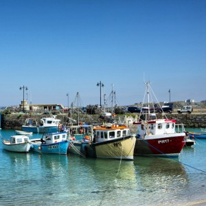 Newquay Harbour Life 4